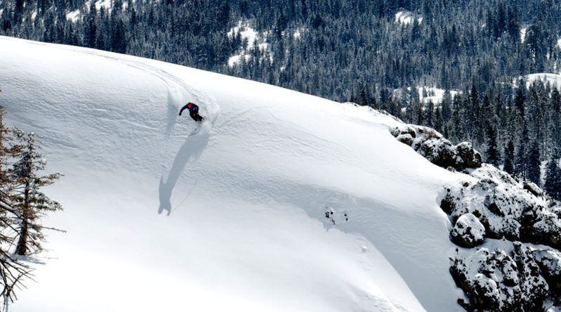 Skier going down a hill with trees in the background covered in snow at Bear Valley California near Tahoe