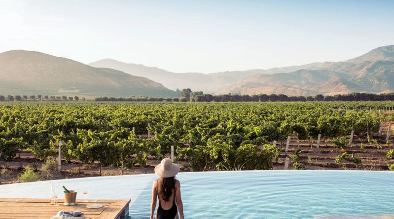 Woman in a pool overlooking the vineyards and hills in Baja, Mexico