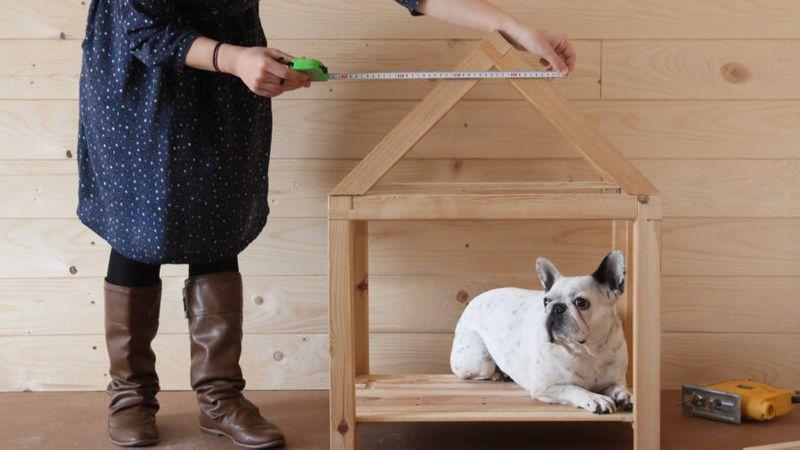 Free plans: Build a stylish dog house