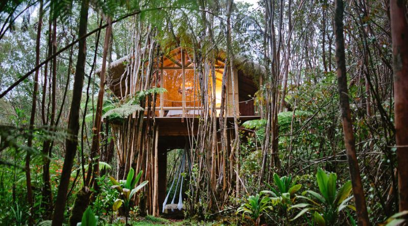 Go off the Grid in Hawaii
