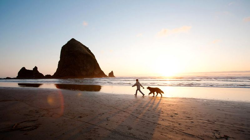 Dog-friendly travel to Cannon Beach, Oregon