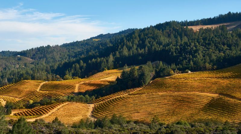 Rolling hills of Calistoga as seen on Getaway Adventures California Wine Country tours