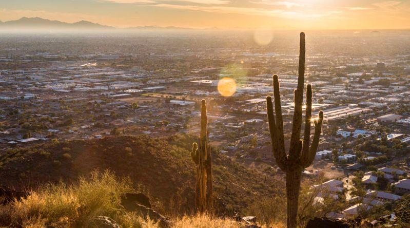 Cactus in the desert environment of Piestawa Peak hiking zone in Phoenix Arizona, one of the great affordable Thanksgiving getaways