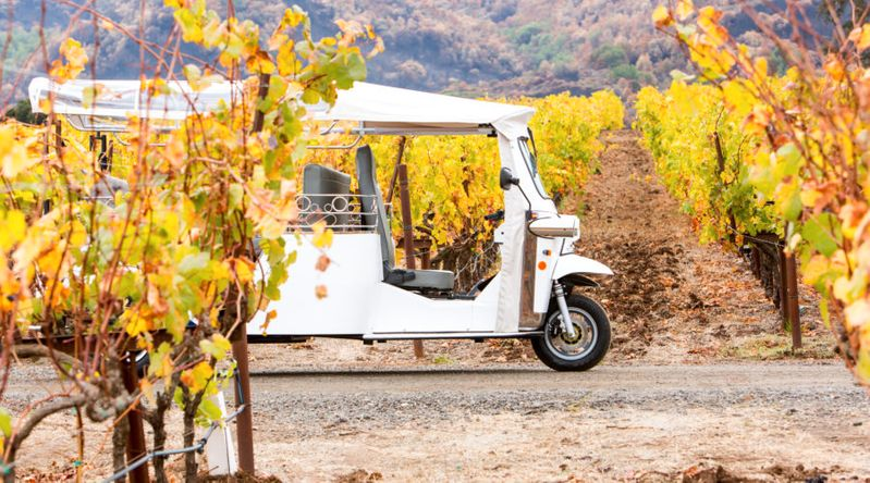 Tuk-tuk riding through the vineyards on a California wine country tour with Lace and Limos