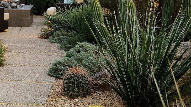 Southwest Backyard Ideas - Sunset Magazine on Southwest Backyard Ideas id=58725