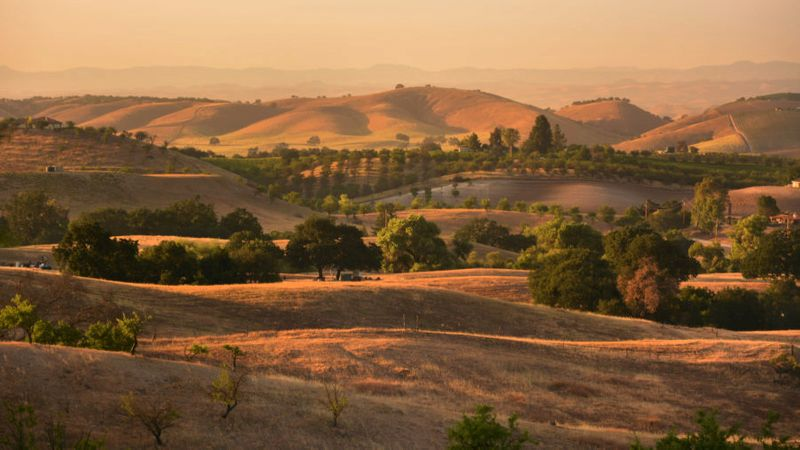 Paso Robles: New Napa