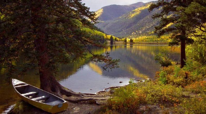 Best fall color in Colorado at Cottonwood Lake, Buena Vista
