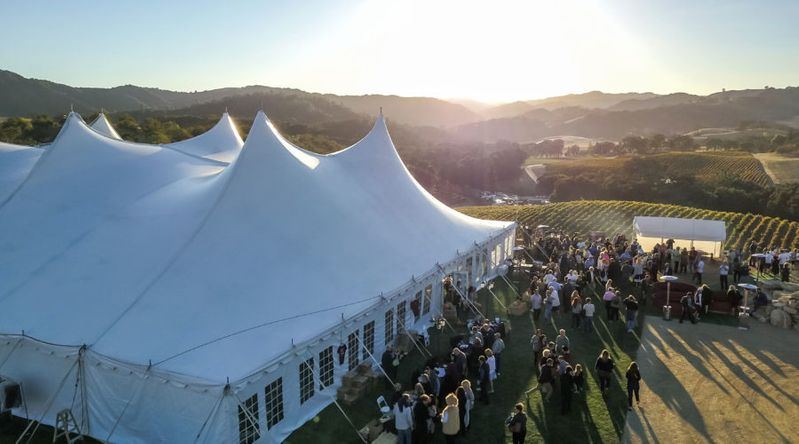 Winery harvest party in Paso Robles