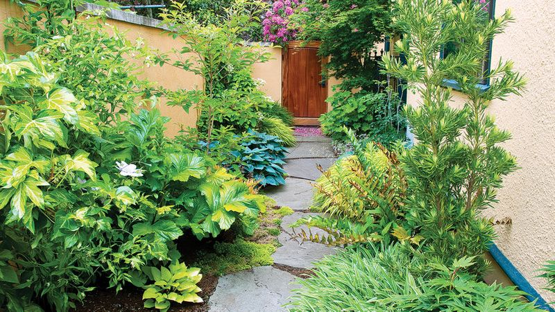 Delicieux 12 Ideas For Side Yards