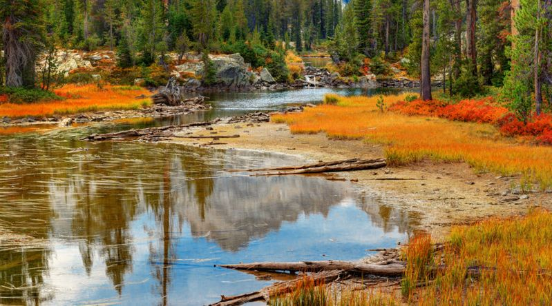 Mountains, forests, and autumn colors reflected in small peaceful outlet of Alice Lake in Sawtooth Wilderness on one of the great fall hikes near Stanley, Idaho