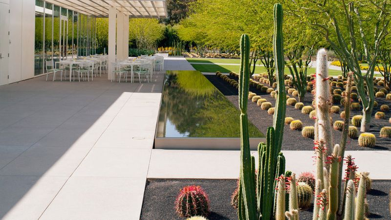 The modernist patio at Sunnylands Center & Gardens in Palm Springs, CA