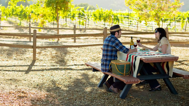 Couple picnicing under the oaks at Hahn Estate in Monterey Wine Country