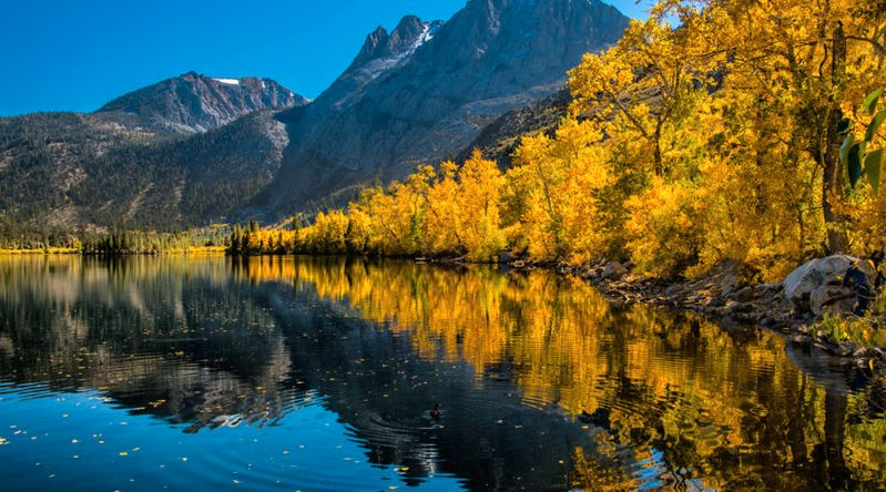 Fall color on Silver Lake on the June Lake Loop in California, which has many of the state's great fall hikes