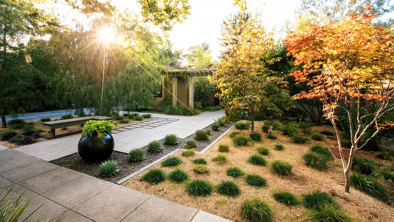 Landscaping Without Grass Sunset Magazine