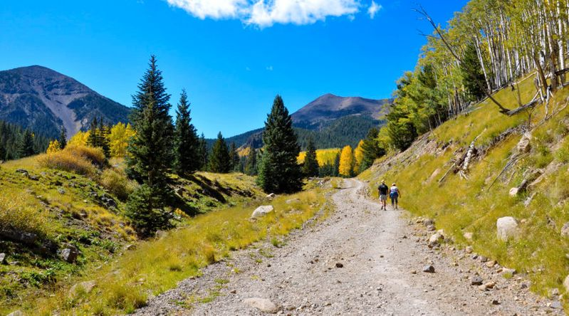 Couple hiking among fall color on the inner basin trail at Coconino National Forest one of the great fall hikes near Flagstaff