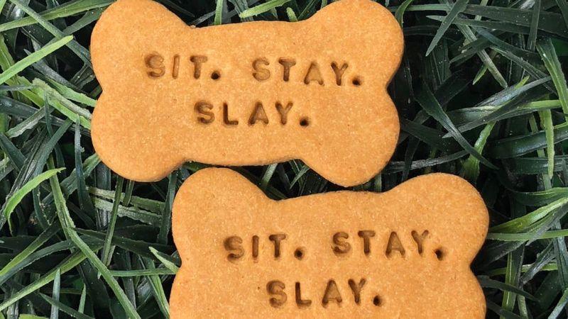 Good Dog Treat Box Sit. Stay. Slay Treat Pack