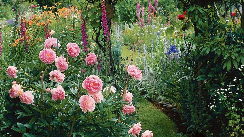 Your Guide To Growing An English Cottage Garden In The West