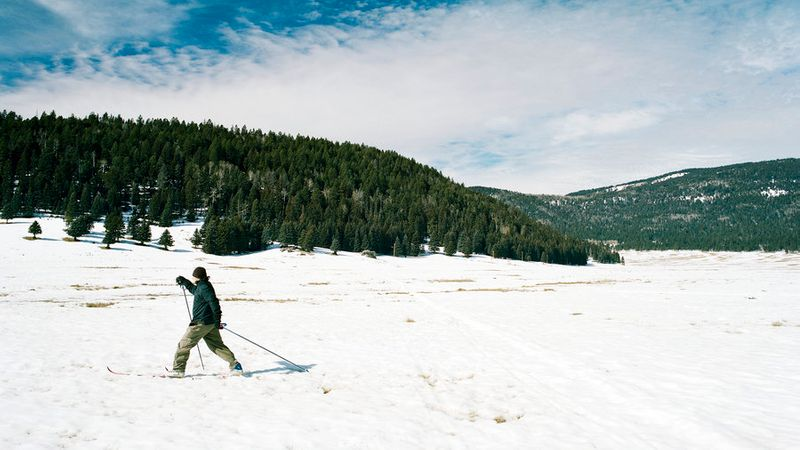 Cross-country skiing in History Grove in Valles Caldera, NM