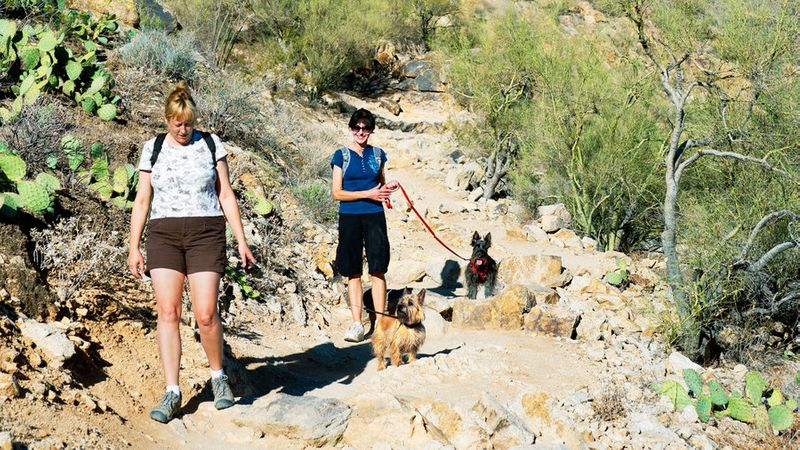 Couple hiking with dogs at South Mountain Park in Phoenix
