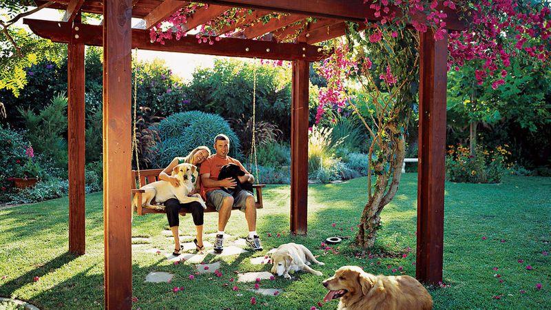 Backyard Ideas for Dogs - Sunset Magazine
