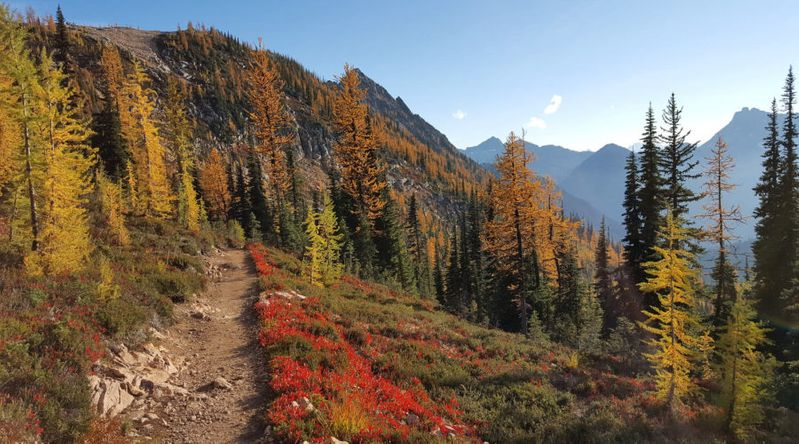 Fall in a Pacific Northwest trip to hike part of the PCT at Cutthroat Pass with foliage