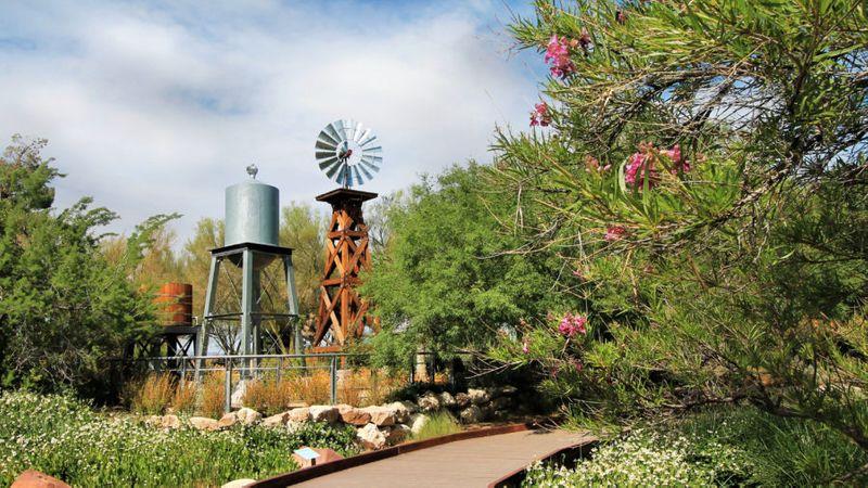 Best Museum: Springs Preserve