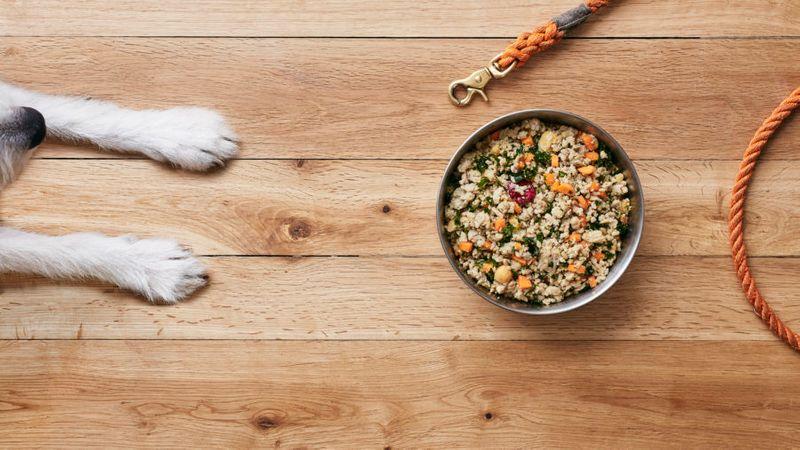 The Farmer's Dog Subscription Meal Plan