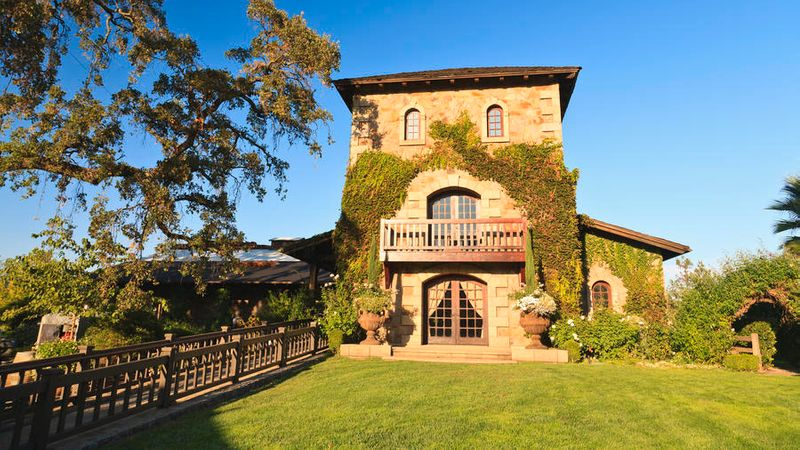 dog-friendly vacations in napa V. Sattui Winery