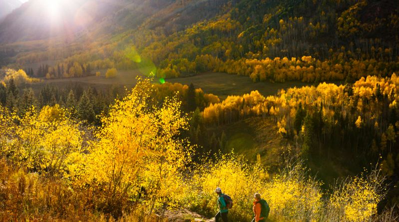 Best fall color in Colorado hiking through the foliage