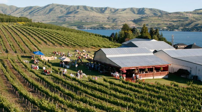 Lake Chelan Winery seen with vineyards and tasting room in front of the lake