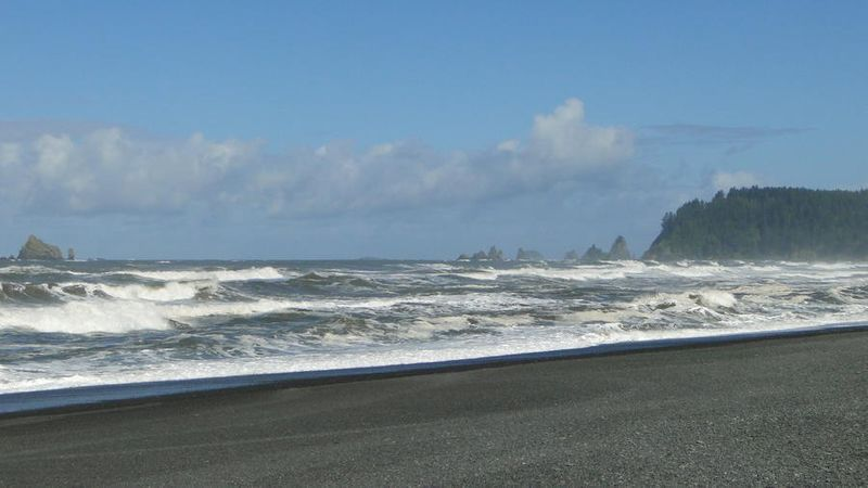 Pacific Heights beach at Olympic National Park