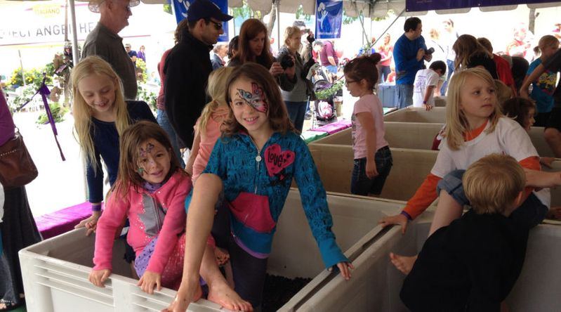 Winery harvest party in Denver with kids stomping grapes