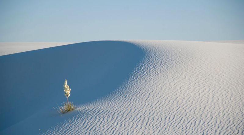 Write Your Message in the Sand at White Sand National Monument, New Mexico
